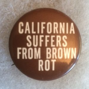 California Suffers from Brown Rot Pinback